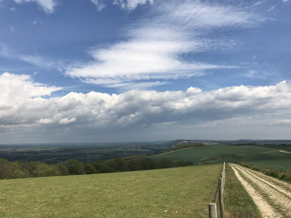 South Downs Way near Bury